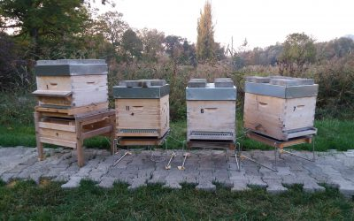France – SYNDAPI 74: 24 beehives of a technical apiary monitored by the BS4X-24 – Sigfox digital beehive scale