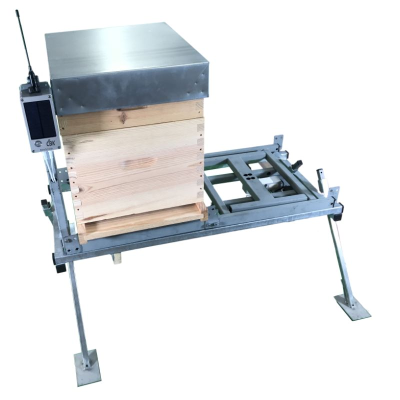 Bassigny hive scale